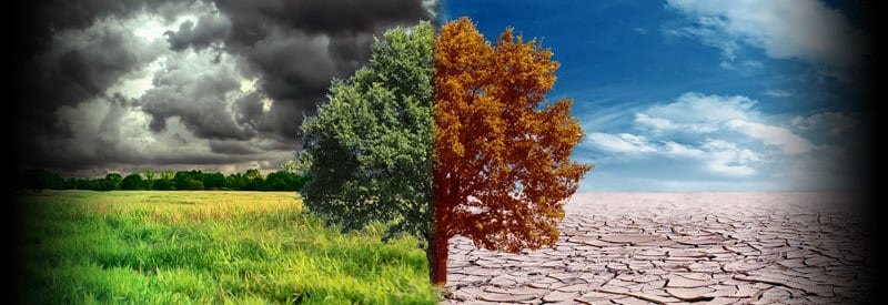 Difference Between Weather And Climate heading
