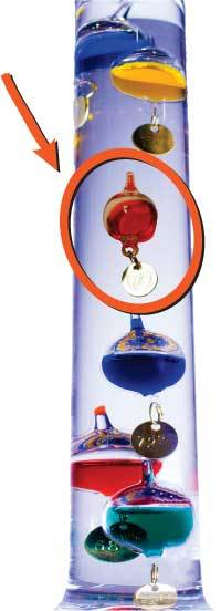 Galileo thermometer glass globe