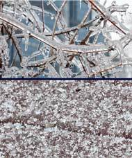 The Difference Between Freezing Rain And Sleet
