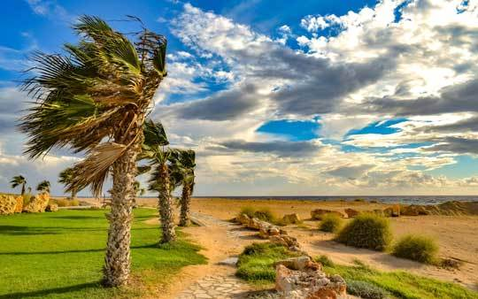 What Is A Gale Force Wind
