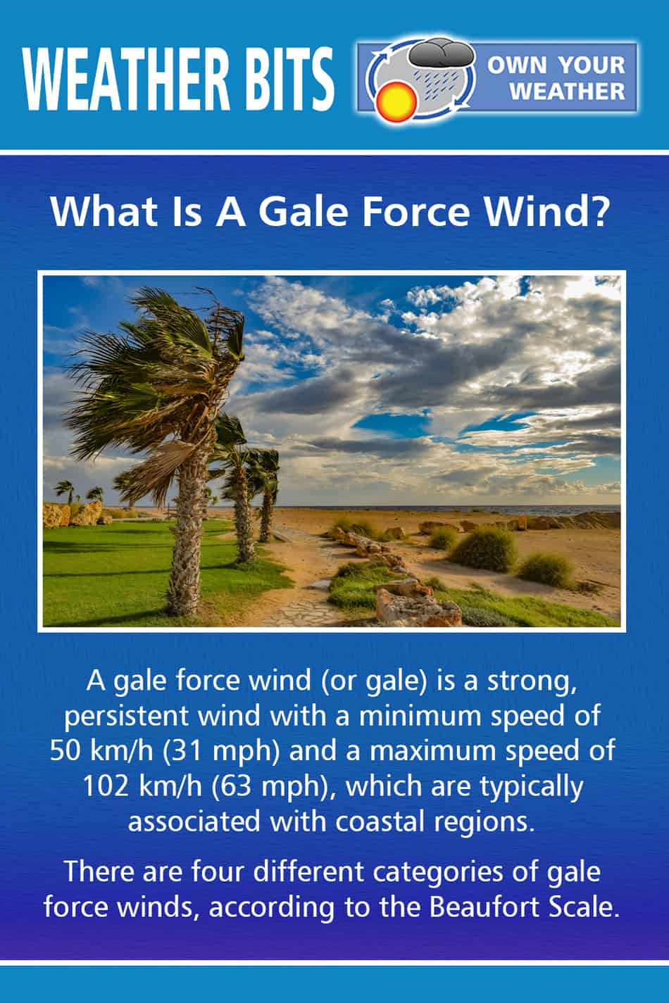 What Are Gale Force Winds