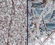 The-Difference-Between Freezing Rain And Sleet